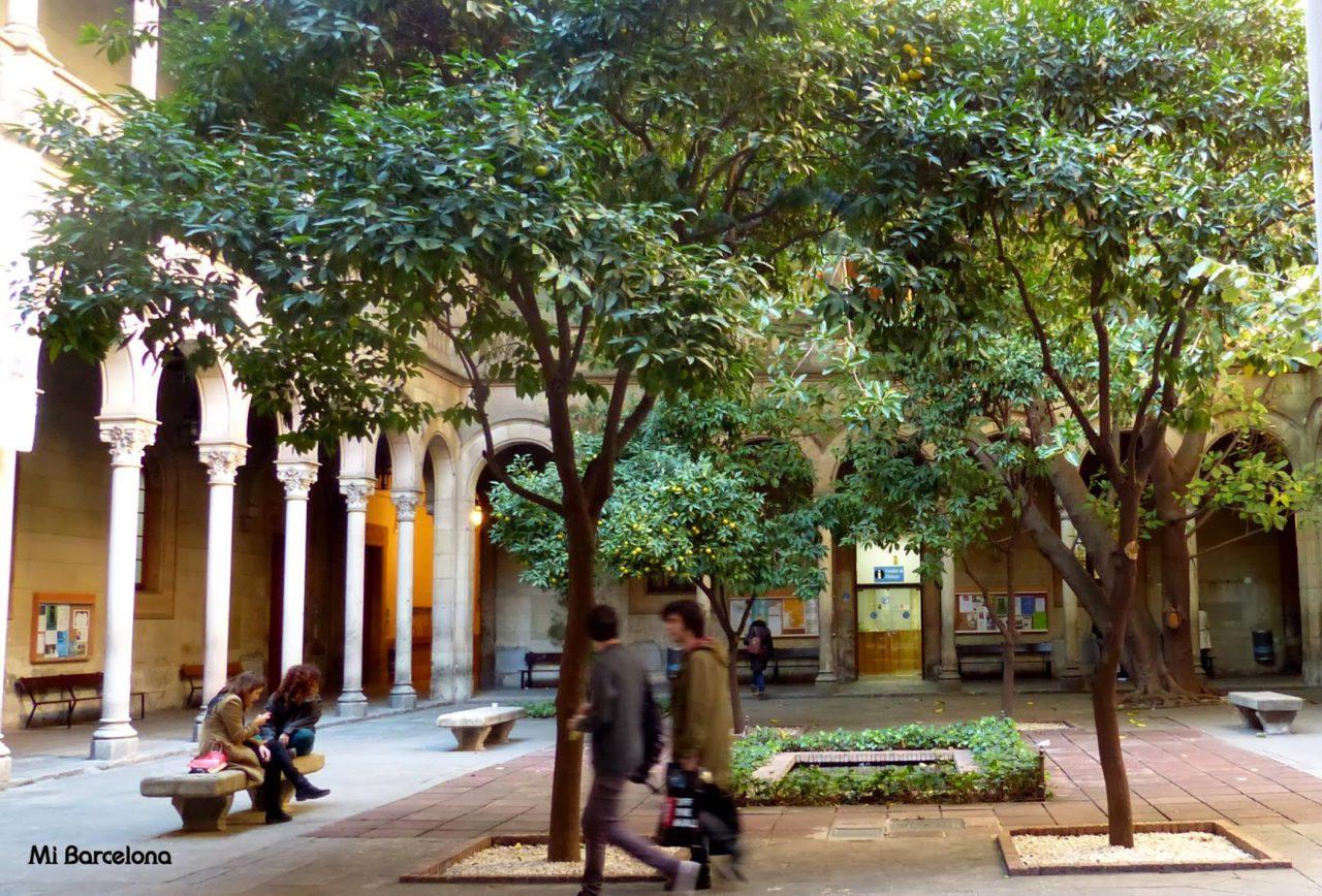 Jardines de la Universidad