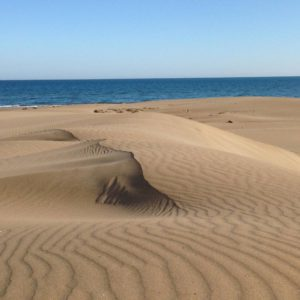 Punta del Fangar1